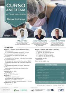 Curso de Anestesia Locorregional @ Hospital Veterinario Valencia Sur