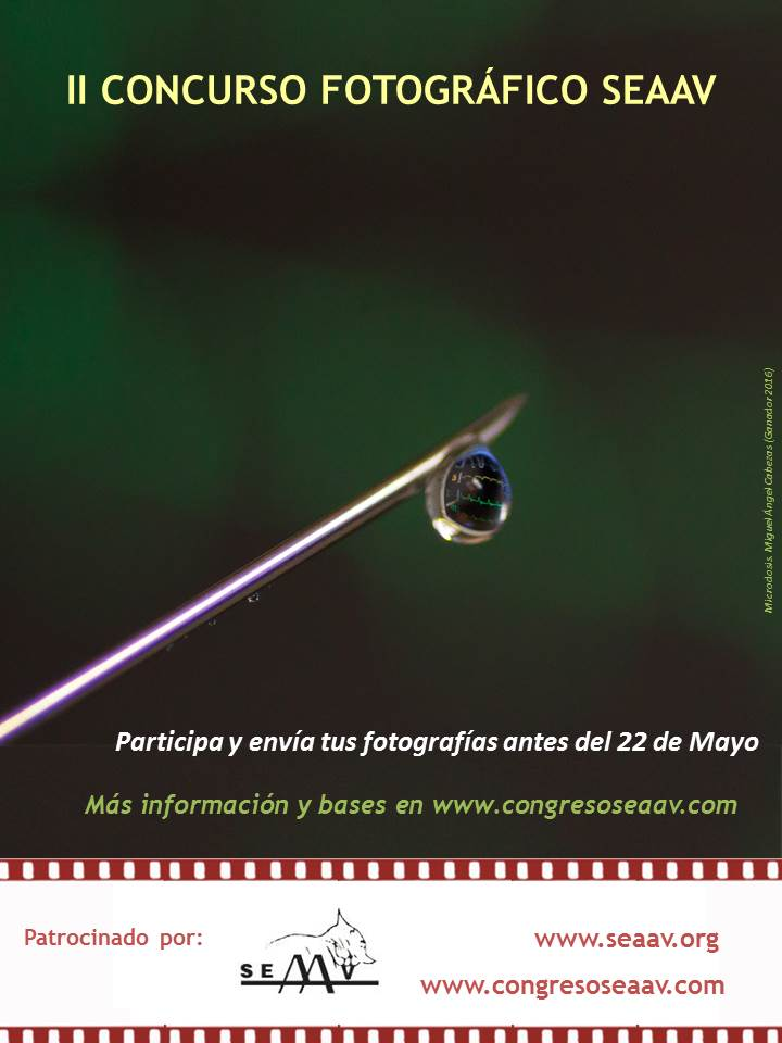 II Concurso Fotográfico SEAAV 2017